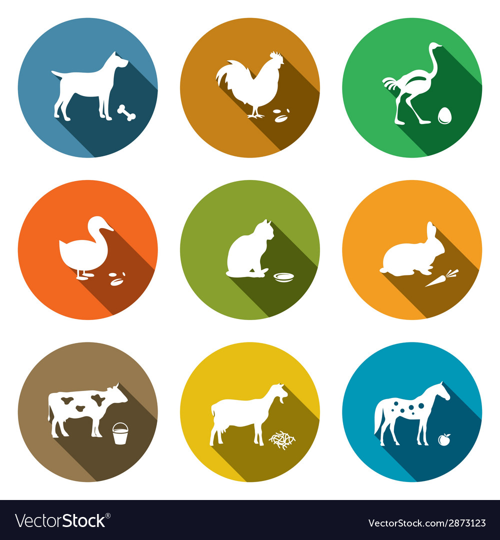 Pets flat icon collection vector | Price: 1 Credit (USD $1)