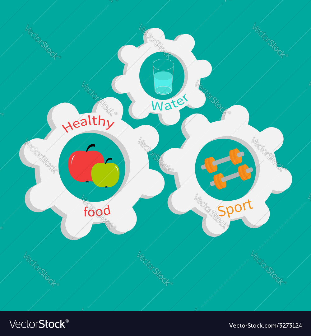 Gear cogwheel set with water apple dumbell healthy vector | Price: 1 Credit (USD $1)