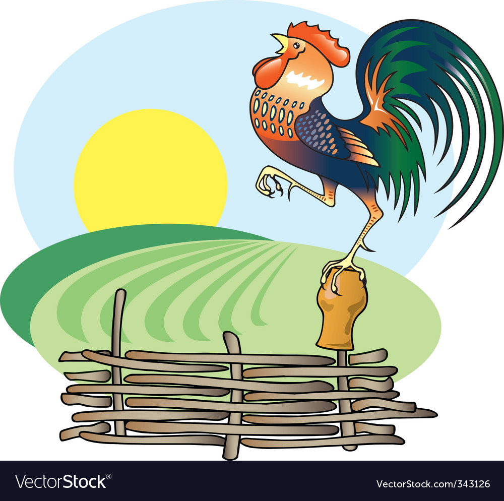 Singing rooster and morning su vector | Price: 1 Credit (USD $1)