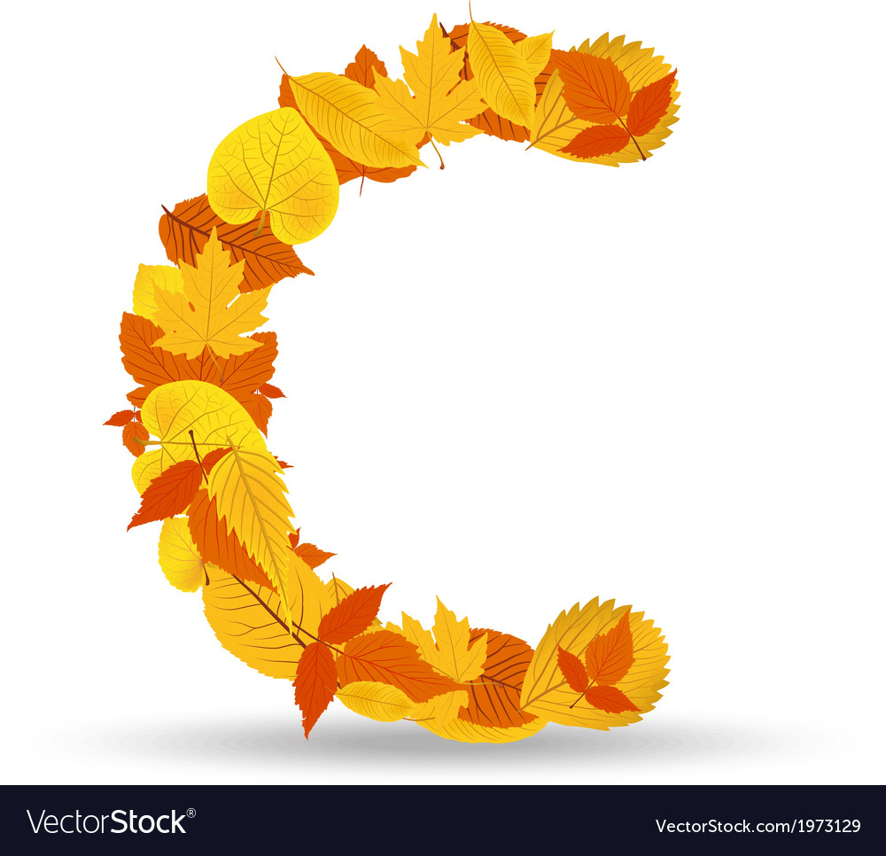 Autumn leaves font letter c vector | Price: 1 Credit (USD $1)