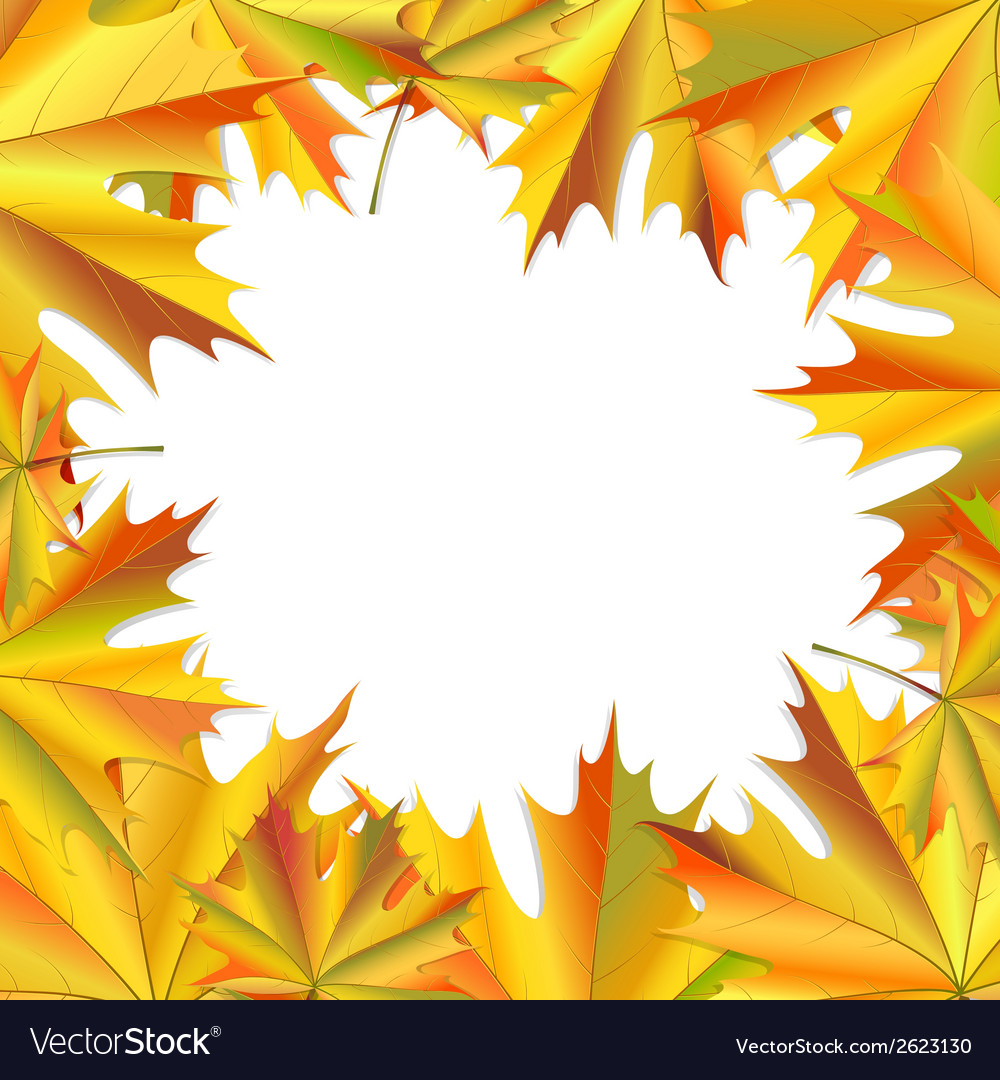 Frame of maple leaves vector | Price: 1 Credit (USD $1)