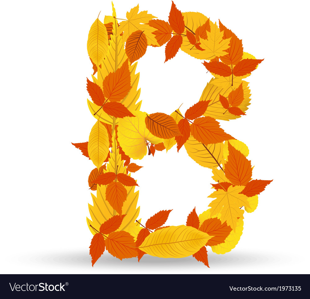 Autumn leaves font letter b vector | Price: 1 Credit (USD $1)