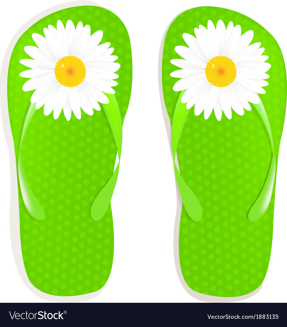 Flip flops with camomile vector   Price: 1 Credit (USD $1)