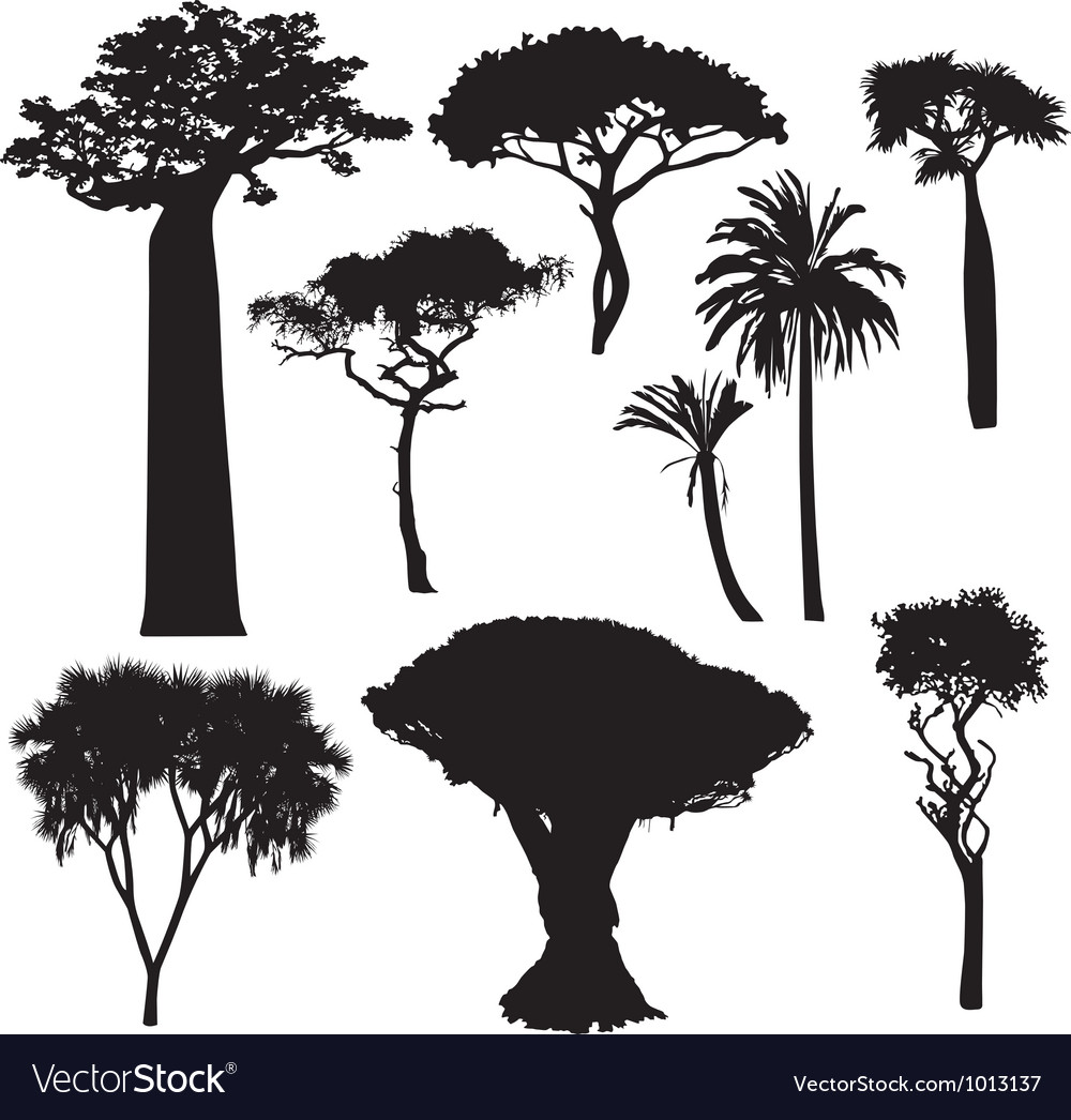 African tree silhouettes vector | Price: 1 Credit (USD $1)