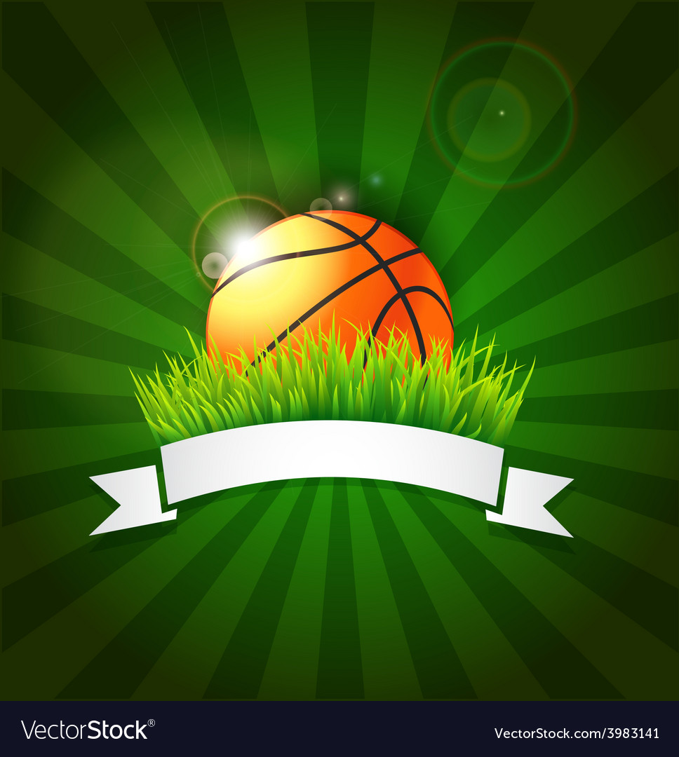 Basketball ball on field grass vector | Price: 1 Credit (USD $1)