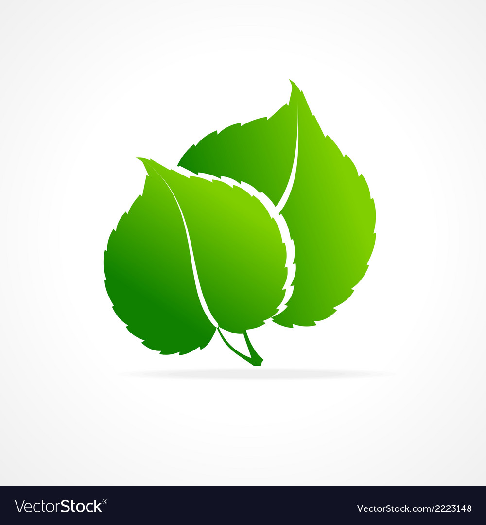Ecology concept of green leaf isolated icon vector | Price: 1 Credit (USD $1)