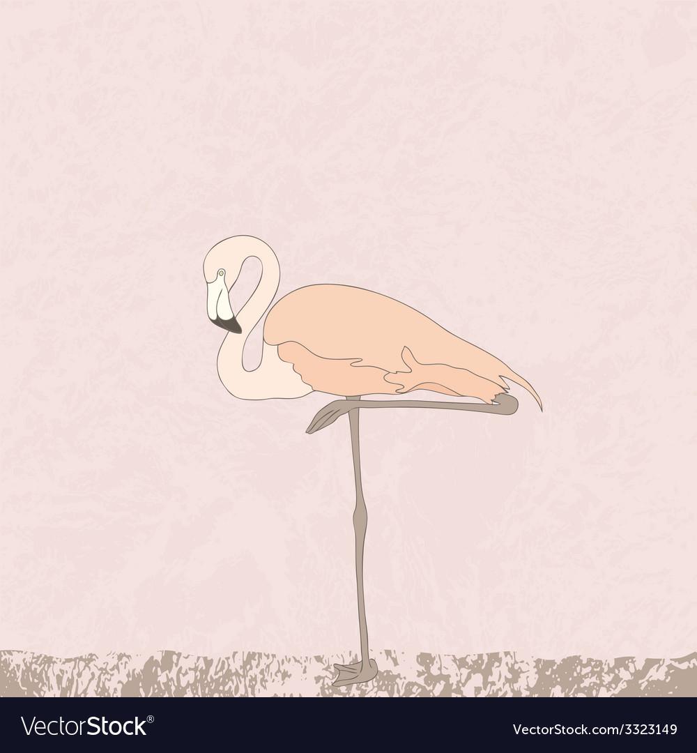 Flamingostand4 vector | Price: 1 Credit (USD $1)