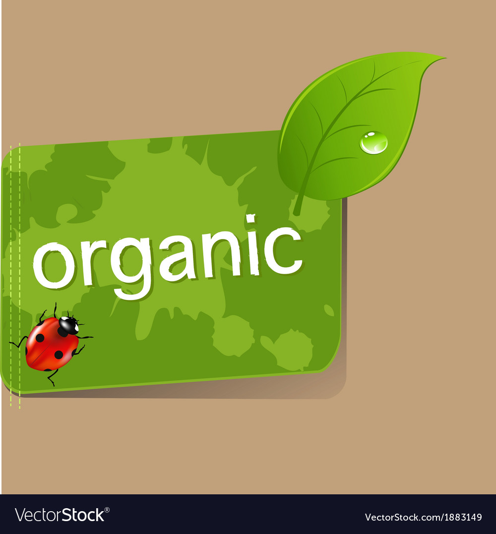 Organic label vector | Price: 1 Credit (USD $1)