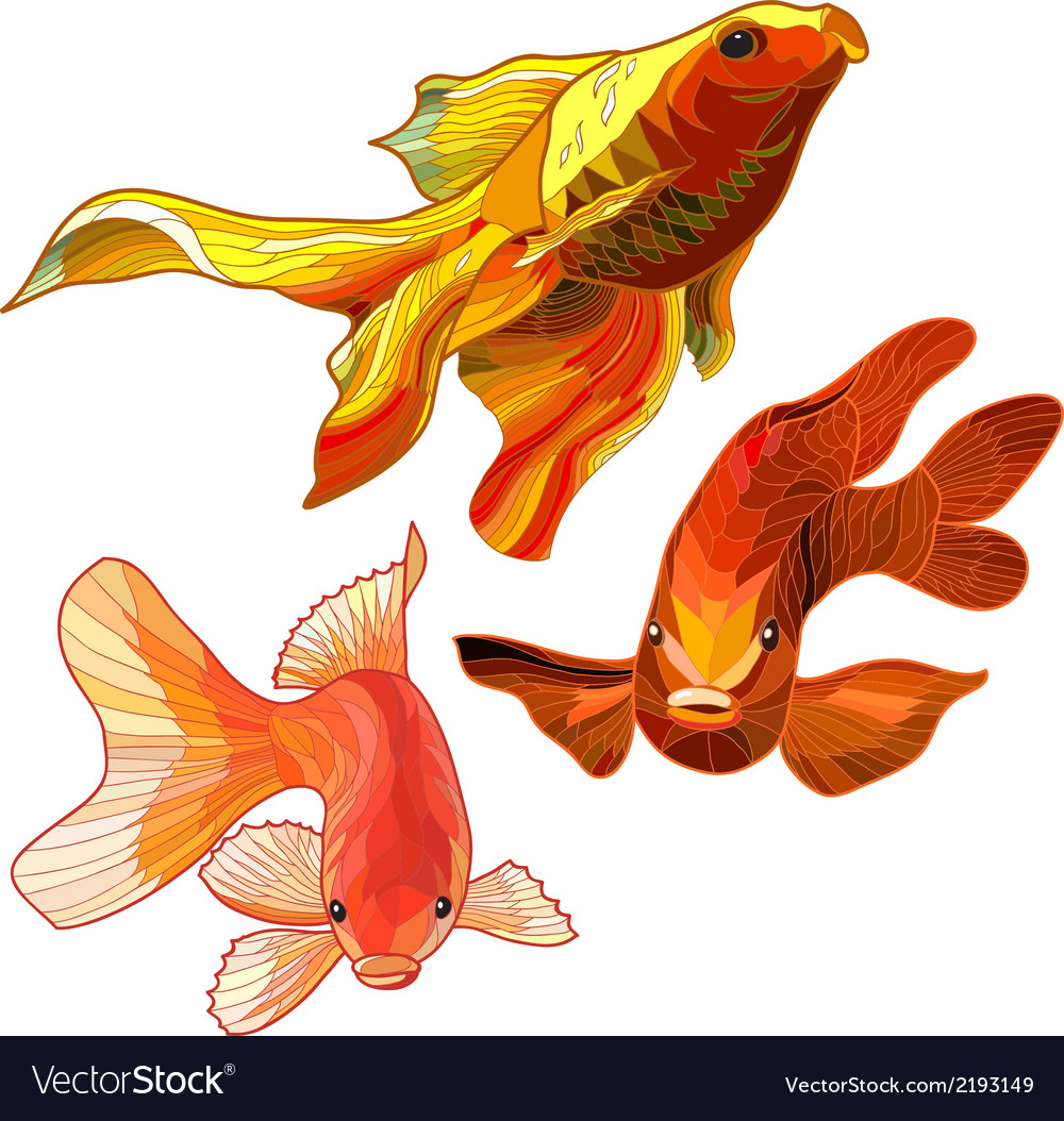 Set of gold fish vector | Price: 1 Credit (USD $1)