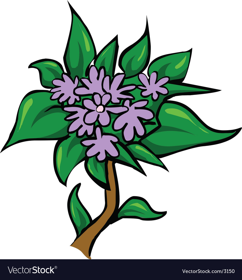 Lilac flower vector | Price: 1 Credit (USD $1)