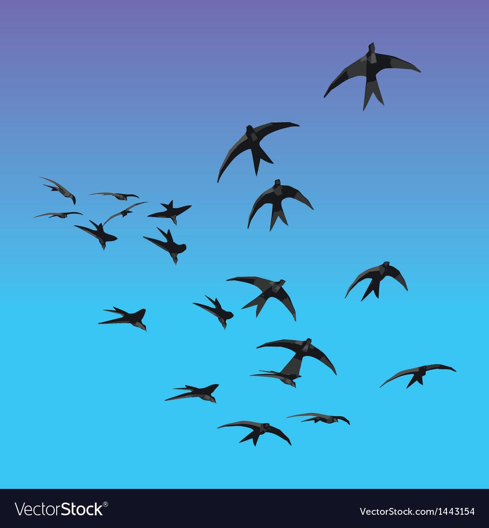 Birds sillhouette vector | Price: 1 Credit (USD $1)