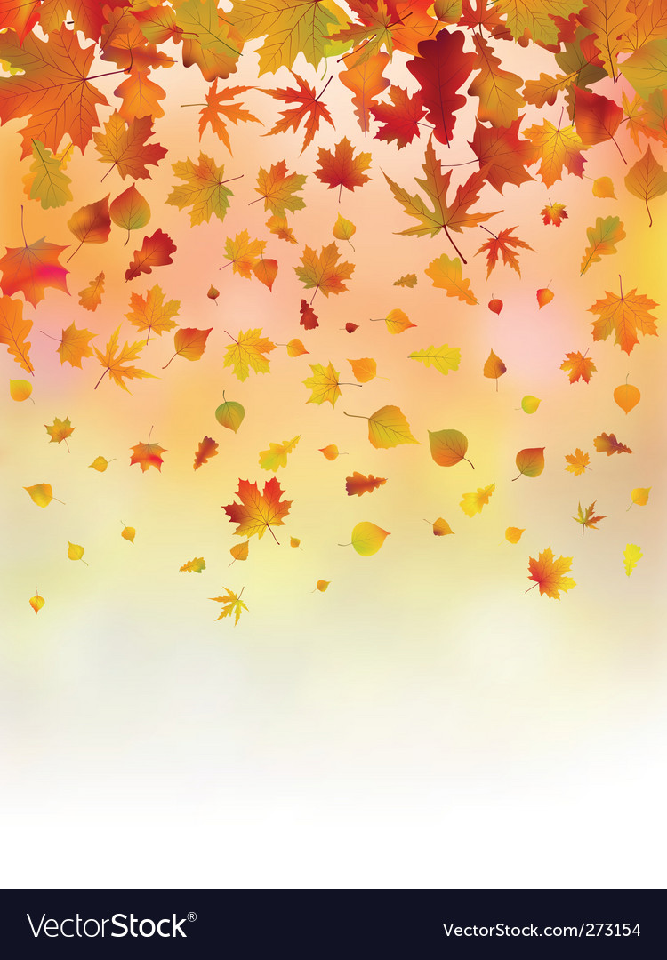 Bright leaves of autumn card vector | Price: 1 Credit (USD $1)