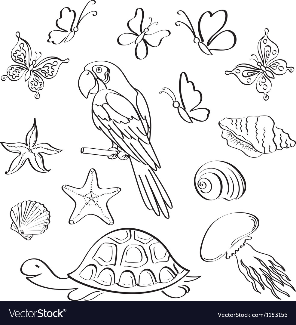 Exotic fauna outline set vector | Price: 1 Credit (USD $1)