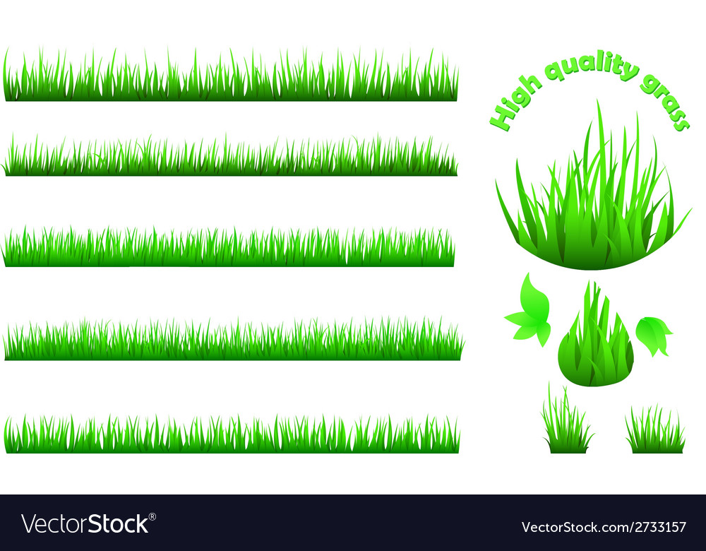 High quality grass set vector | Price: 1 Credit (USD $1)
