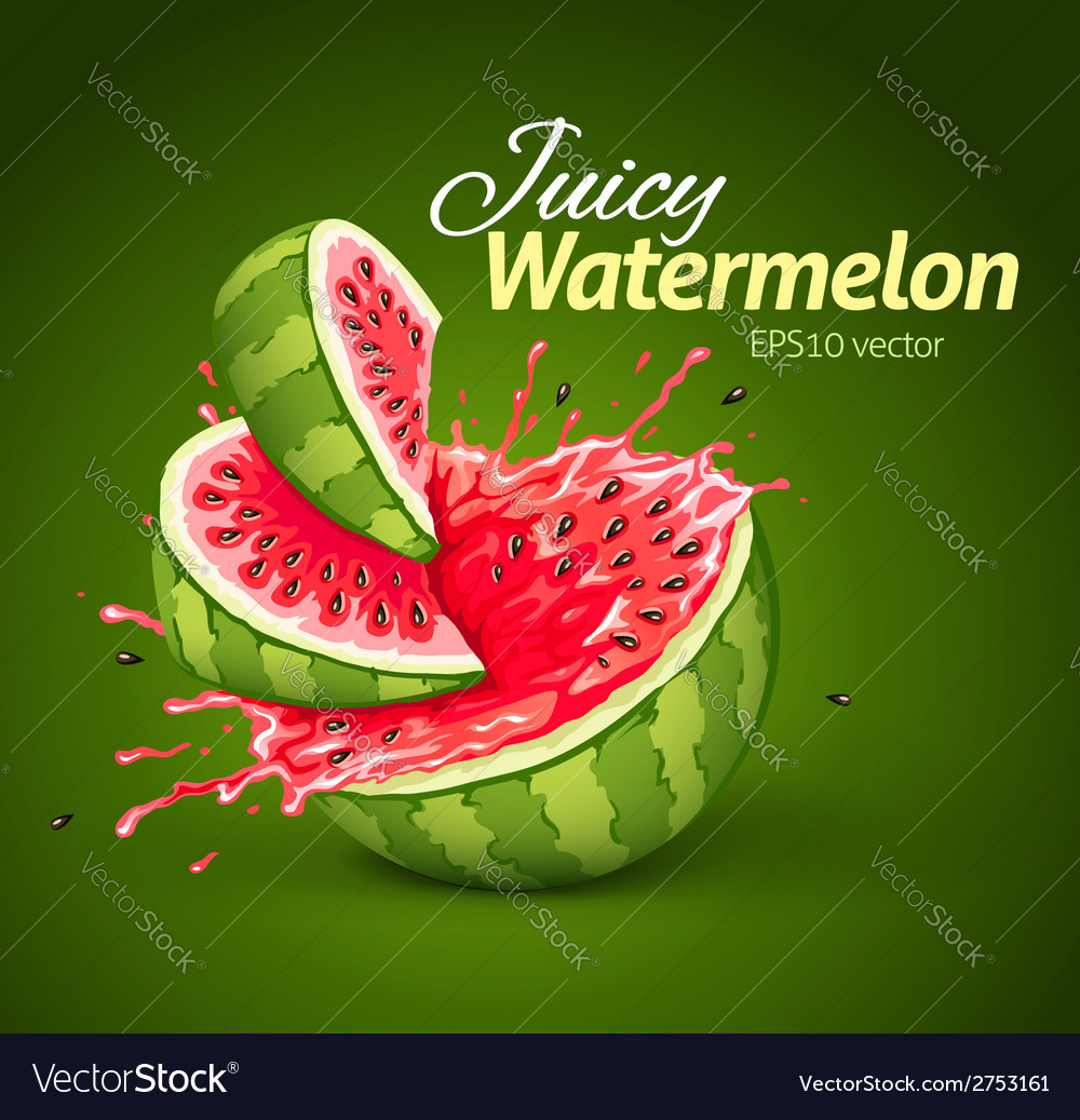 Watermelon with juice splash vector | Price: 3 Credit (USD $3)