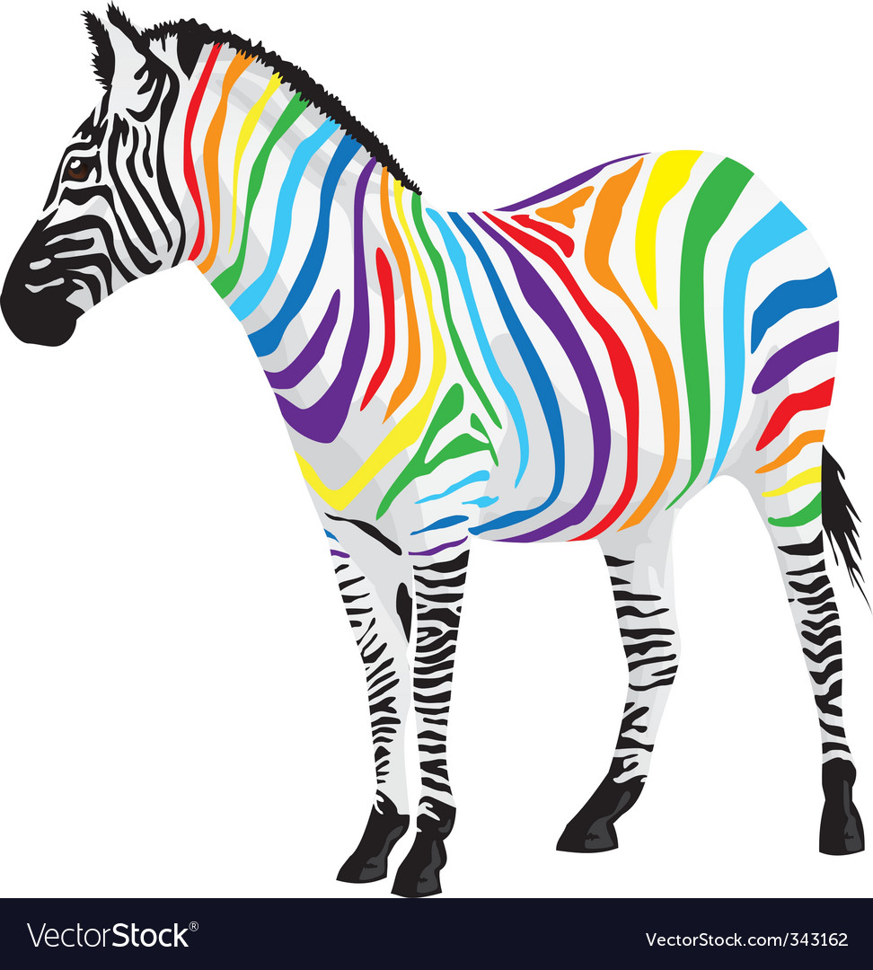 Zebra strips of different colors vector | Price: 1 Credit (USD $1)