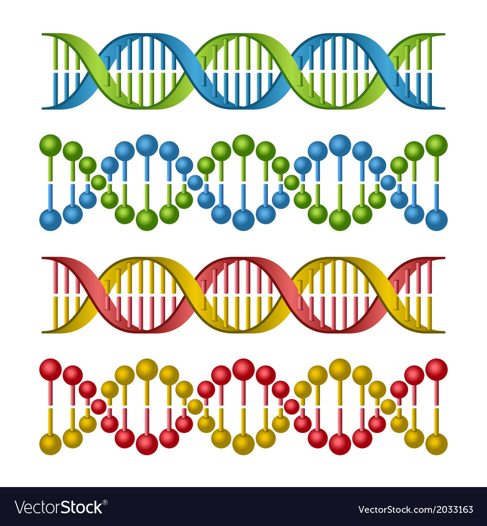 Dna molecules set for science and medicine design vector | Price: 1 Credit (USD $1)