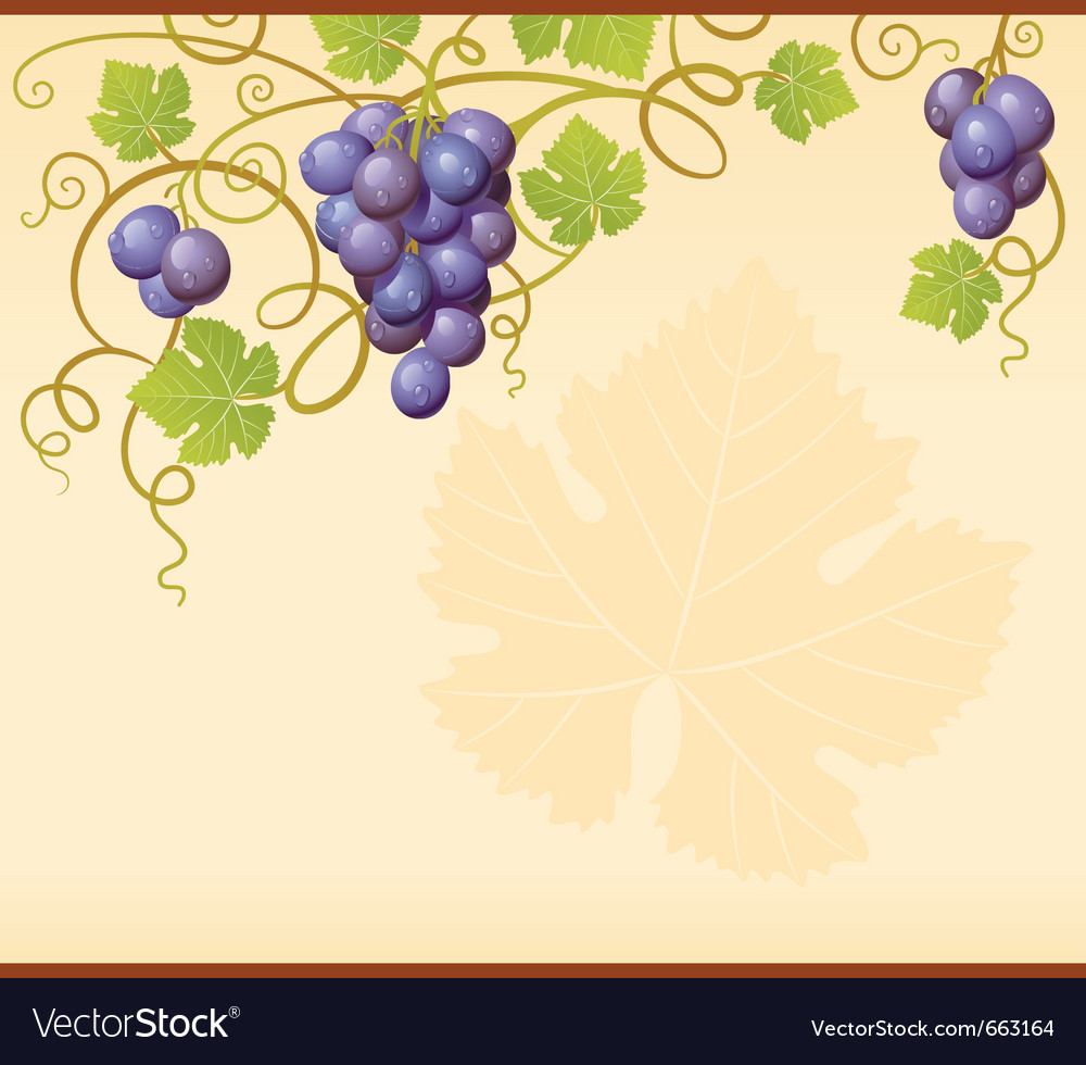 Grape frame vector | Price: 1 Credit (USD $1)