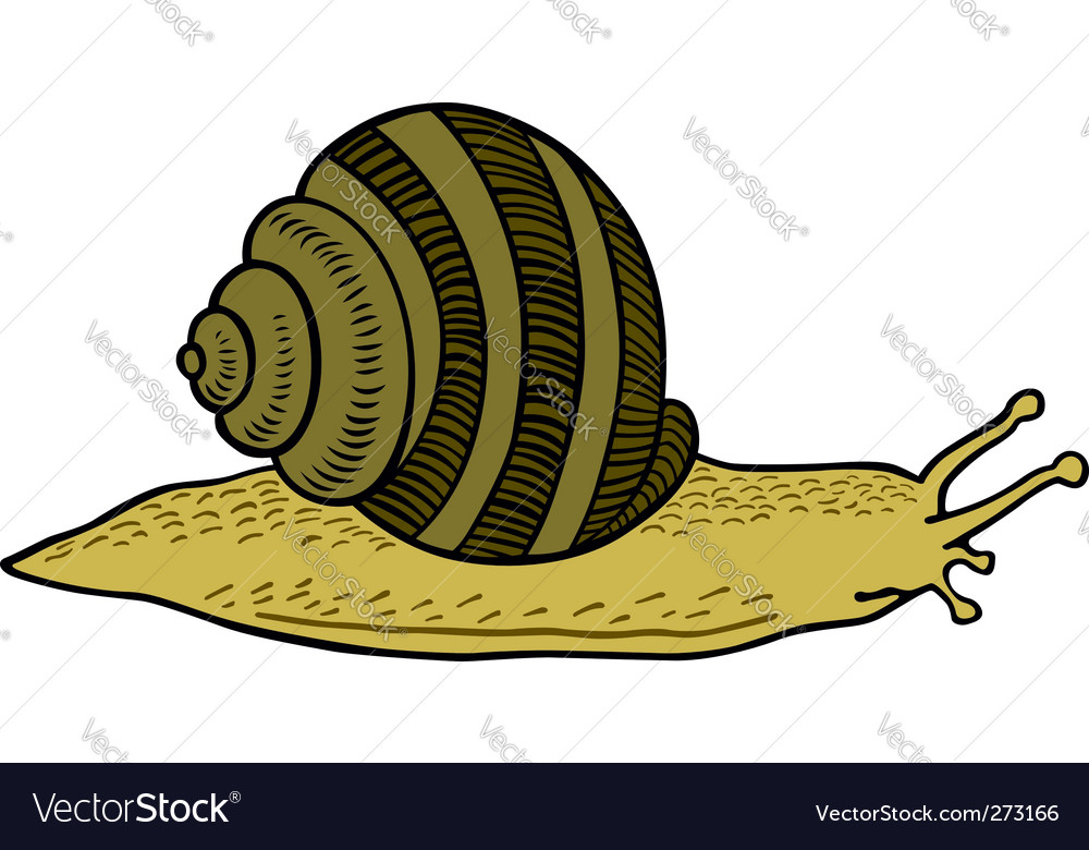 Crawling snail vector | Price: 1 Credit (USD $1)