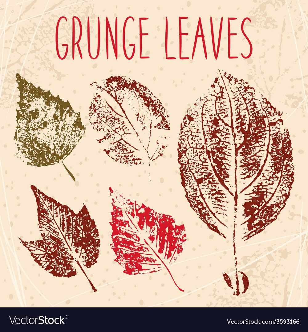 Grunge fallen leaves texture eps 8 vector | Price: 1 Credit (USD $1)