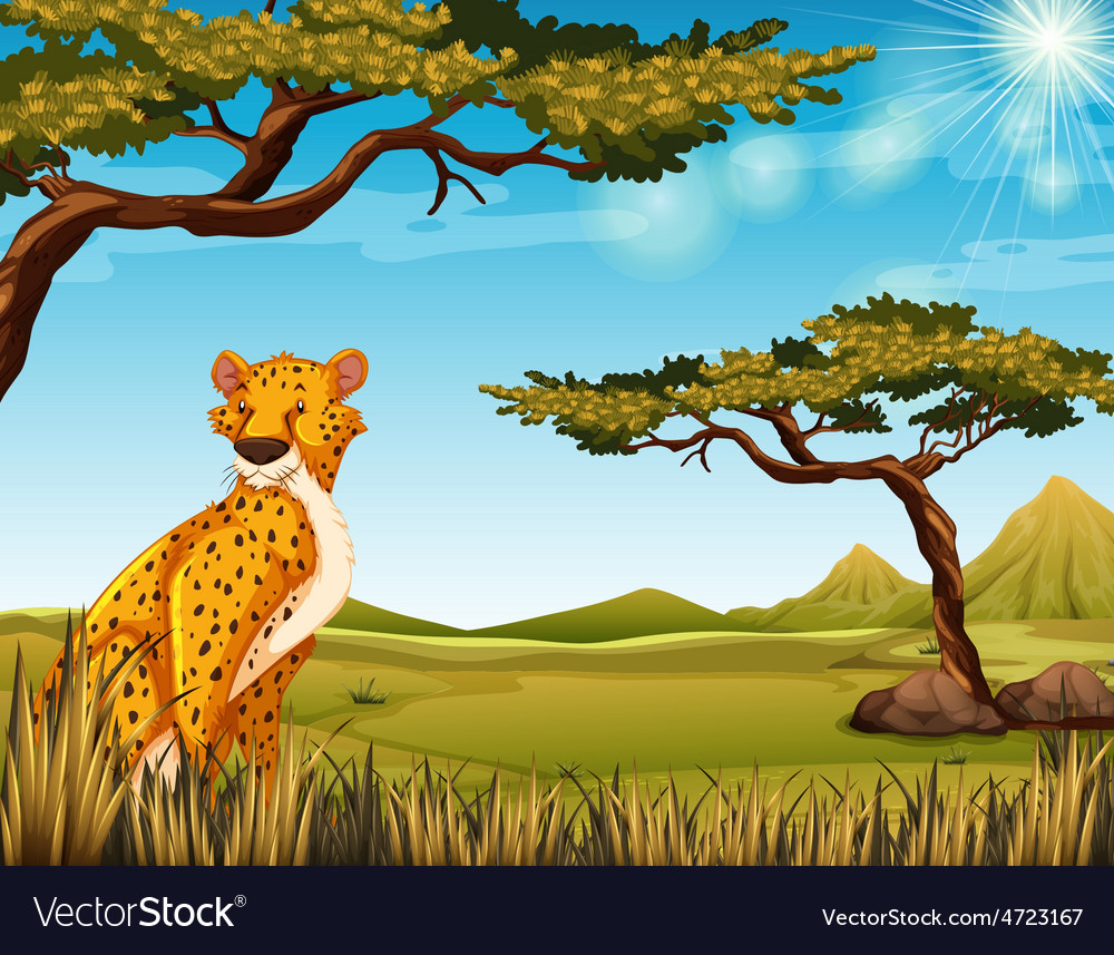 Cheetah vector | Price: 3 Credit (USD $3)