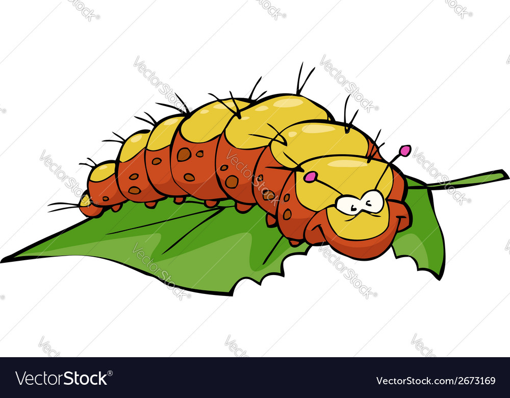 Caterpillar eating leaf vector | Price: 1 Credit (USD $1)