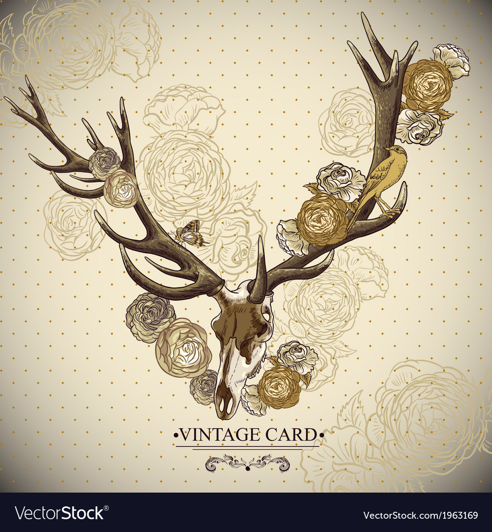 Vintage floral background with a deer skull vector | Price: 1 Credit (USD $1)