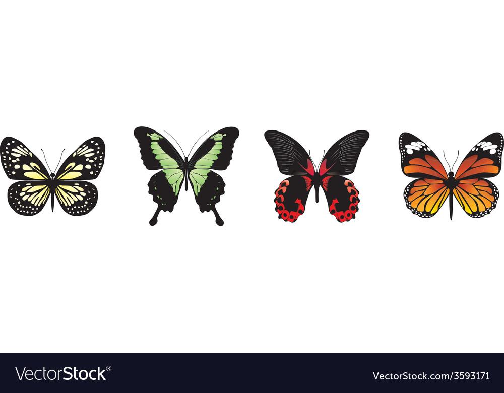Butterflies set vector   Price: 1 Credit (USD $1)