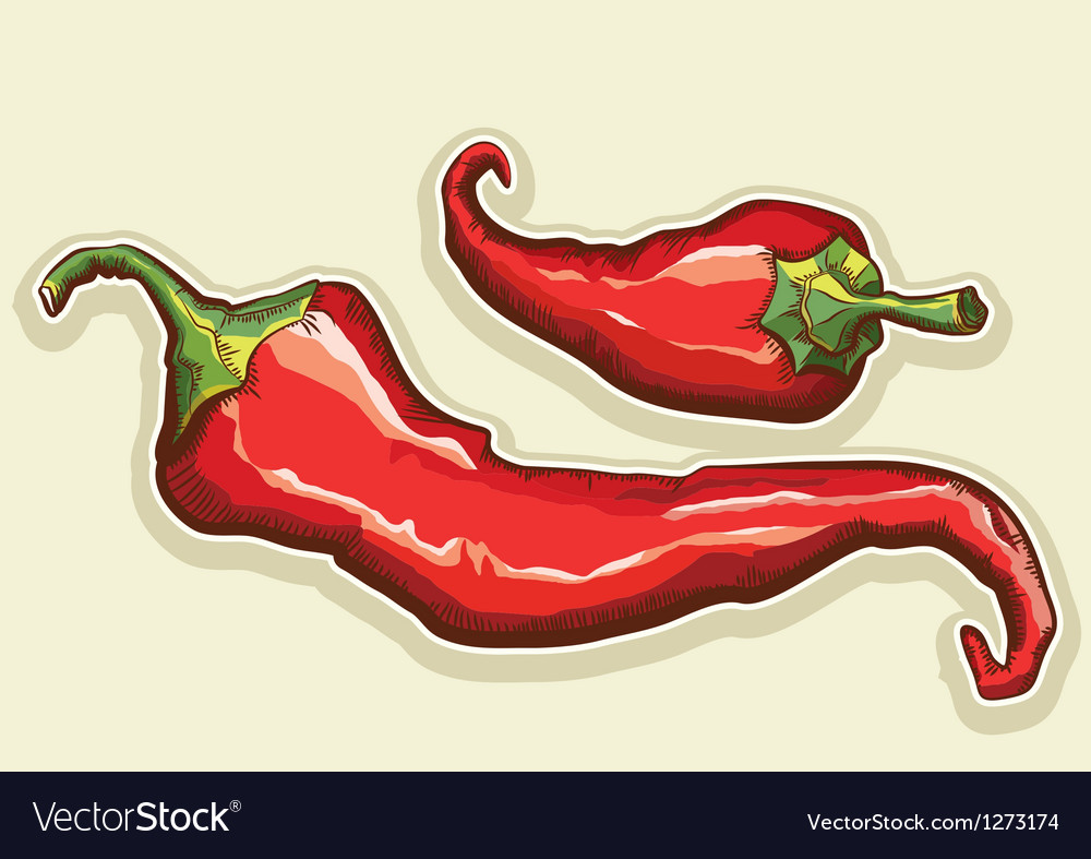 Red hot peppers vector | Price: 3 Credit (USD $3)