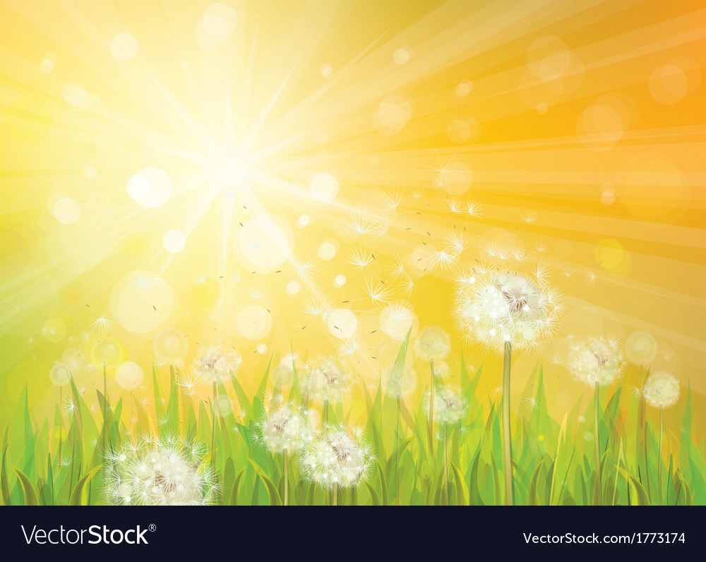 Spring background yellow vector | Price: 1 Credit (USD $1)
