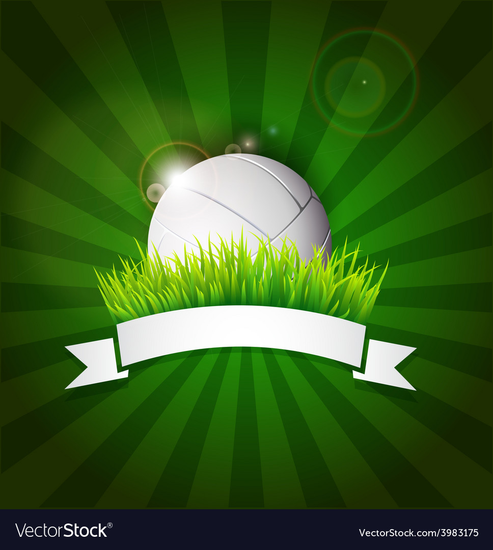Volleyball ball on field grass vector | Price: 1 Credit (USD $1)