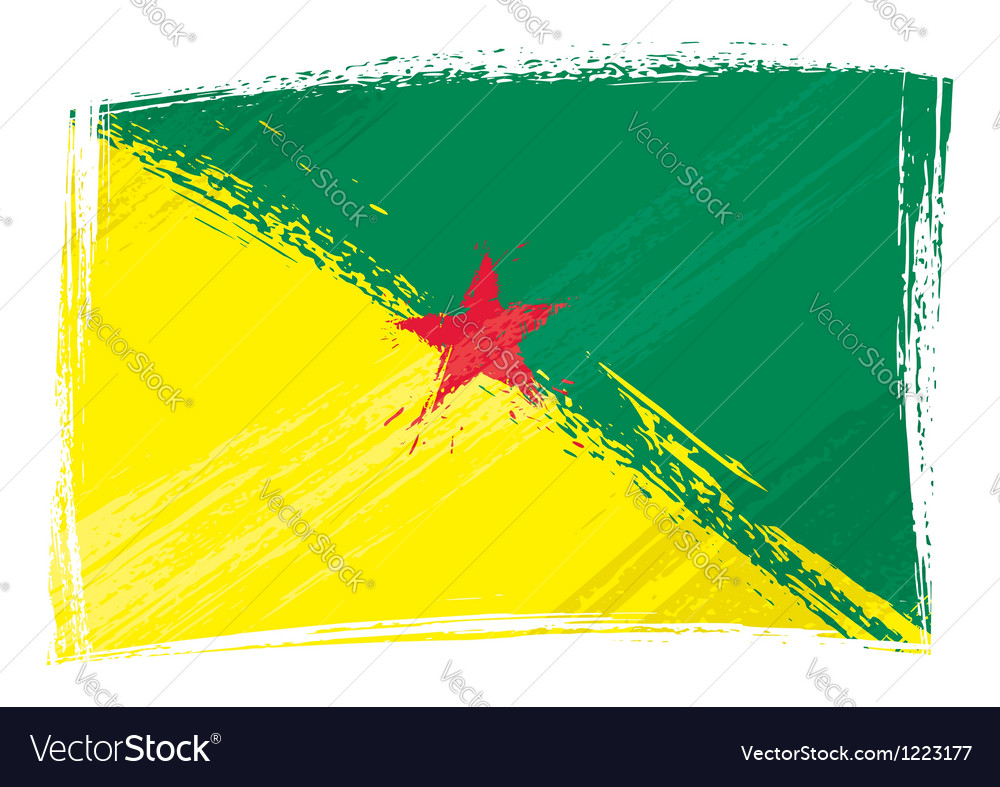 Grunge french guiana flag vector | Price: 1 Credit (USD $1)
