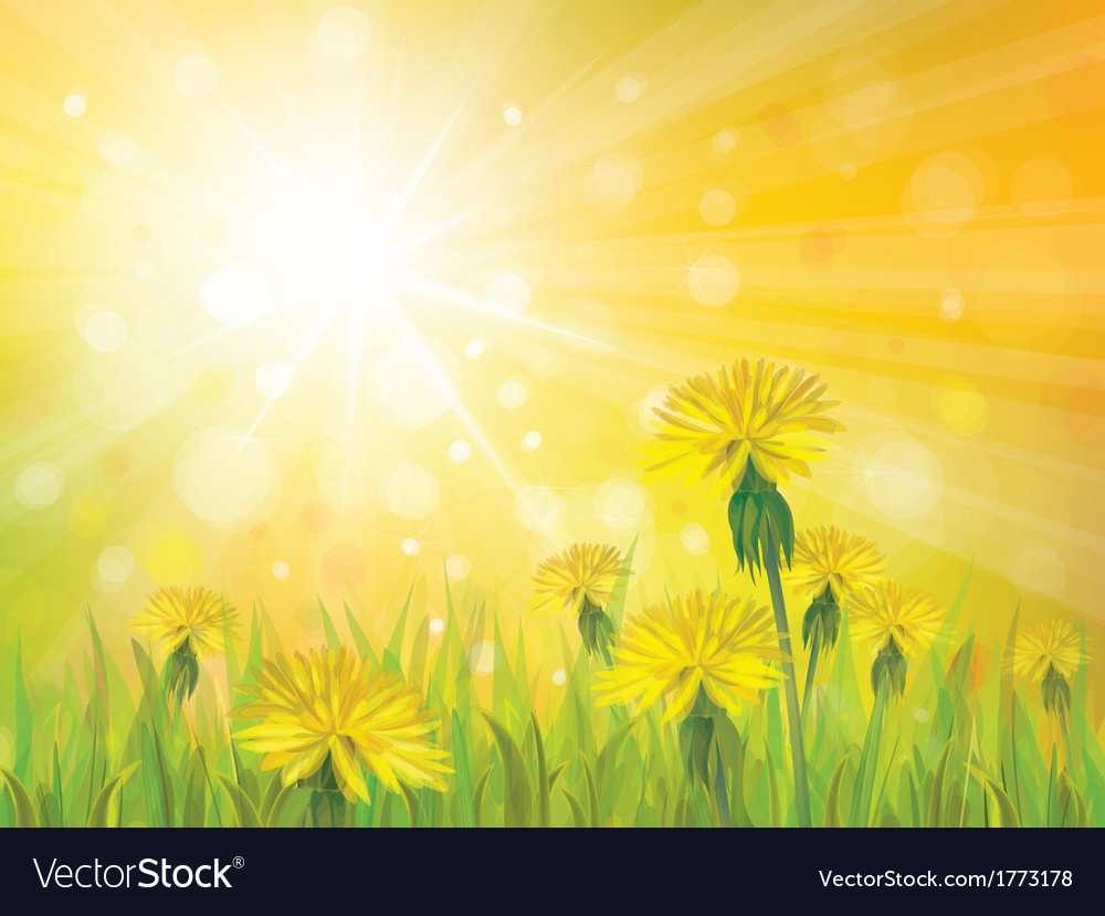 Spring yellow sun vector | Price: 1 Credit (USD $1)