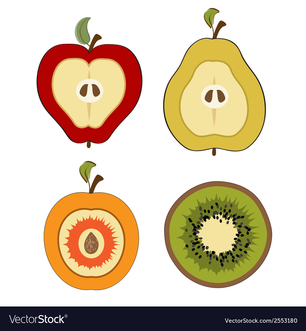 Fruit items cut in half isolated on white vector | Price: 1 Credit (USD $1)