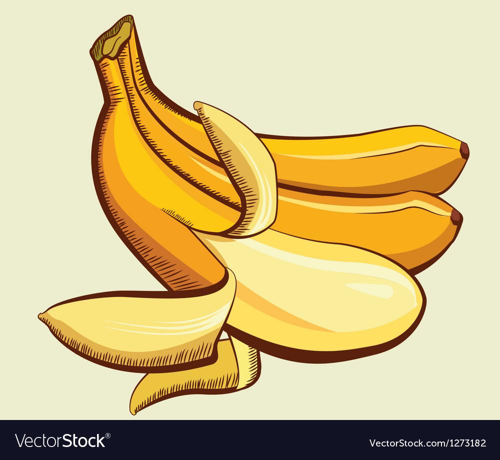 Yellow bananas vector | Price: 3 Credit (USD $3)