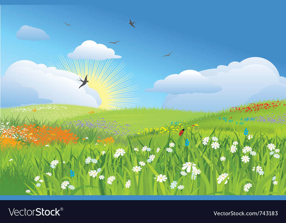 Colorfull meadow flower and grass blue sky vector | Price: 1 Credit (USD $1)