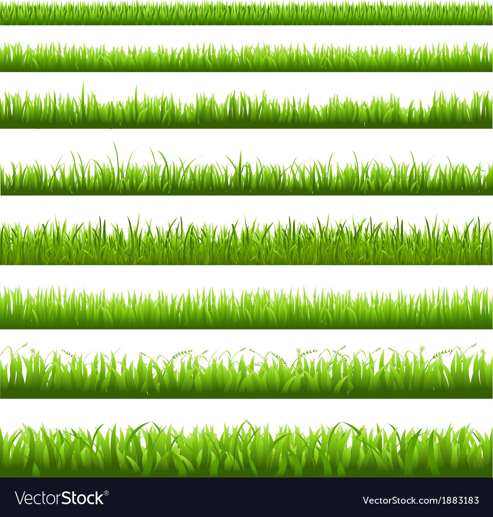 Green grass border vector | Price: 1 Credit (USD $1)