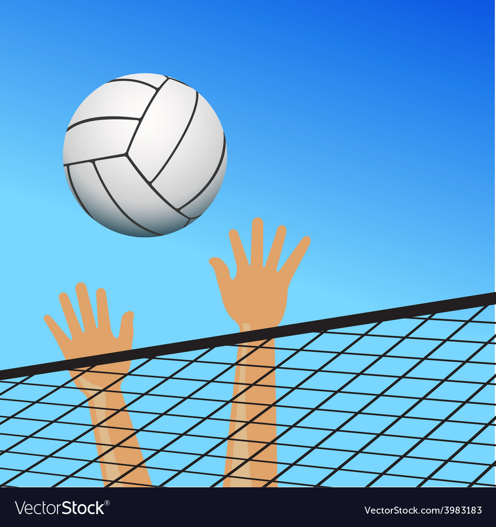 Volleyball player hands over the net with ball vector | Price: 1 Credit (USD $1)