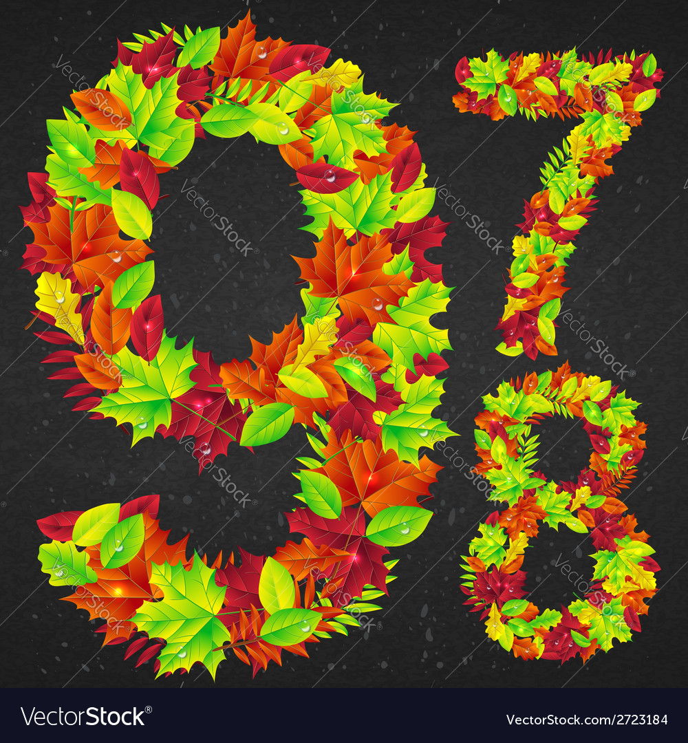 Number of autumn leaves vector | Price: 1 Credit (USD $1)