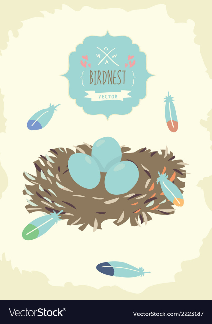 Bird nest design vector | Price: 1 Credit (USD $1)