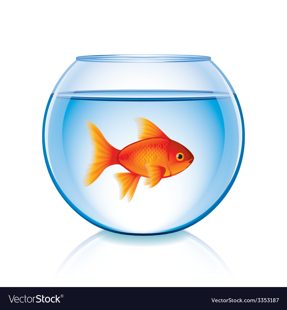 Goldfish in bowl isolated vector | Price: 3 Credit (USD $3)