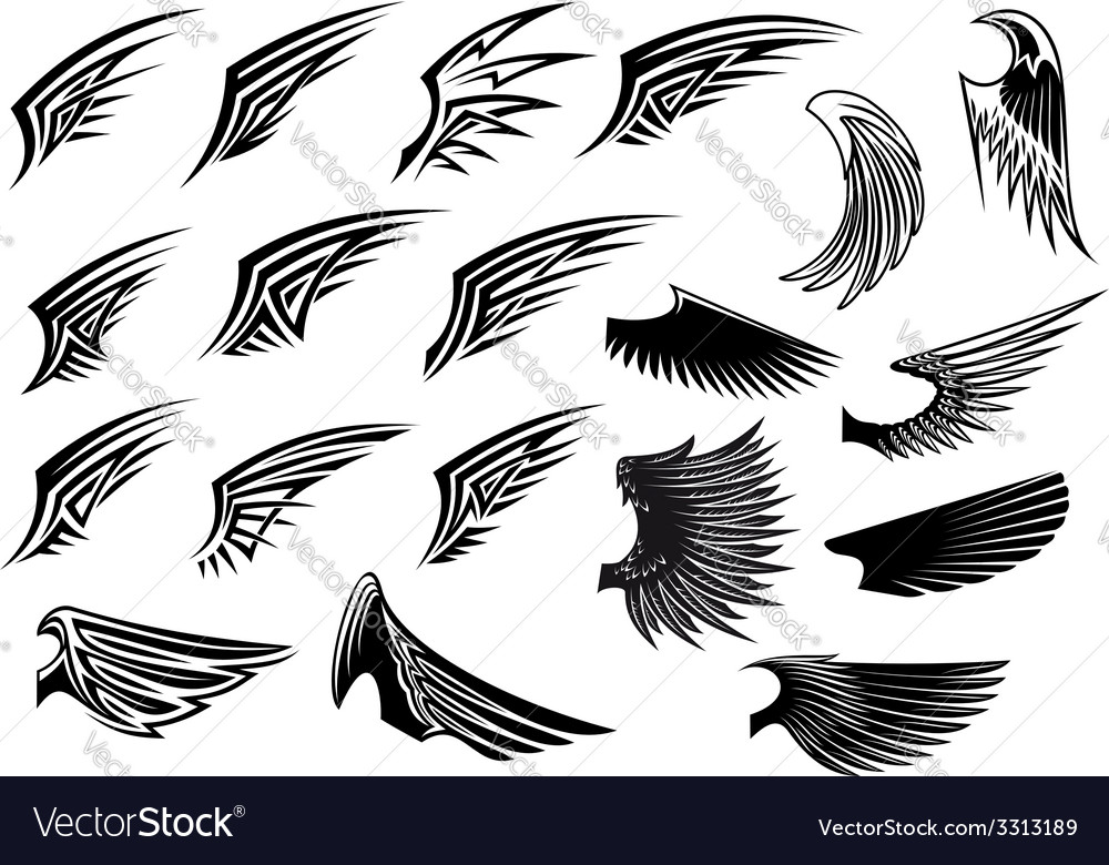 Set of heraldic bird wings vector | Price: 1 Credit (USD $1)