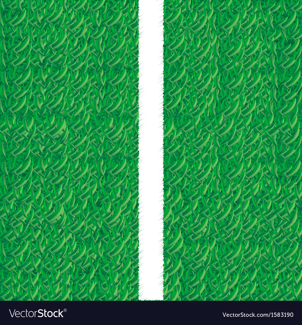 Soccer field grass line vector | Price: 1 Credit (USD $1)