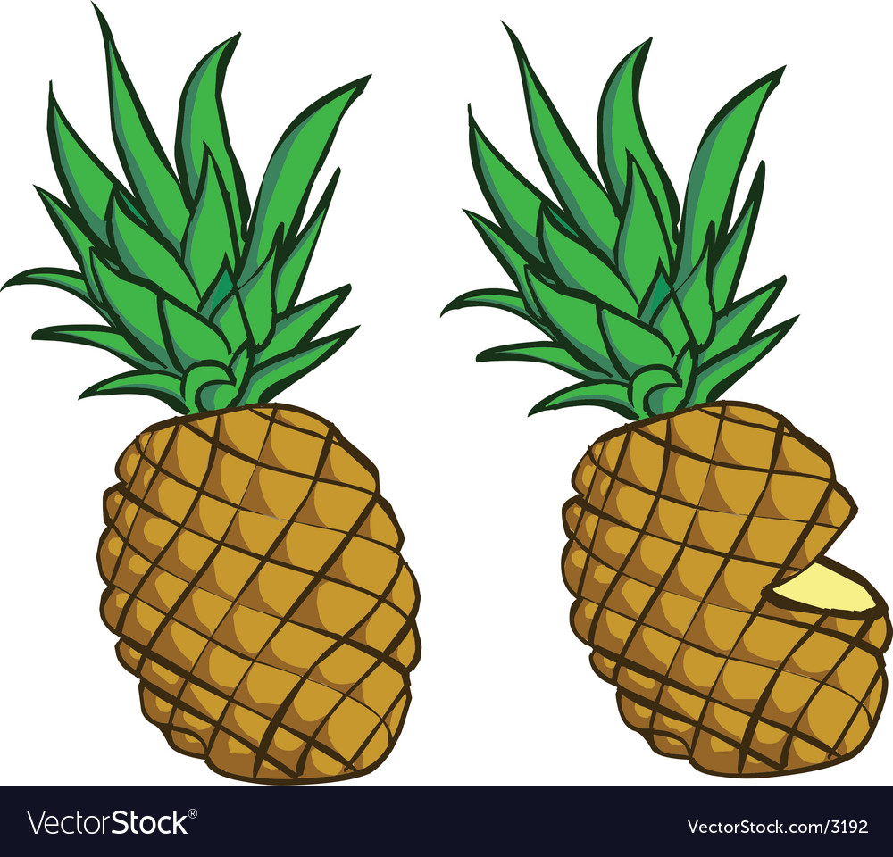 Delicious pineapple vector | Price: 1 Credit (USD $1)