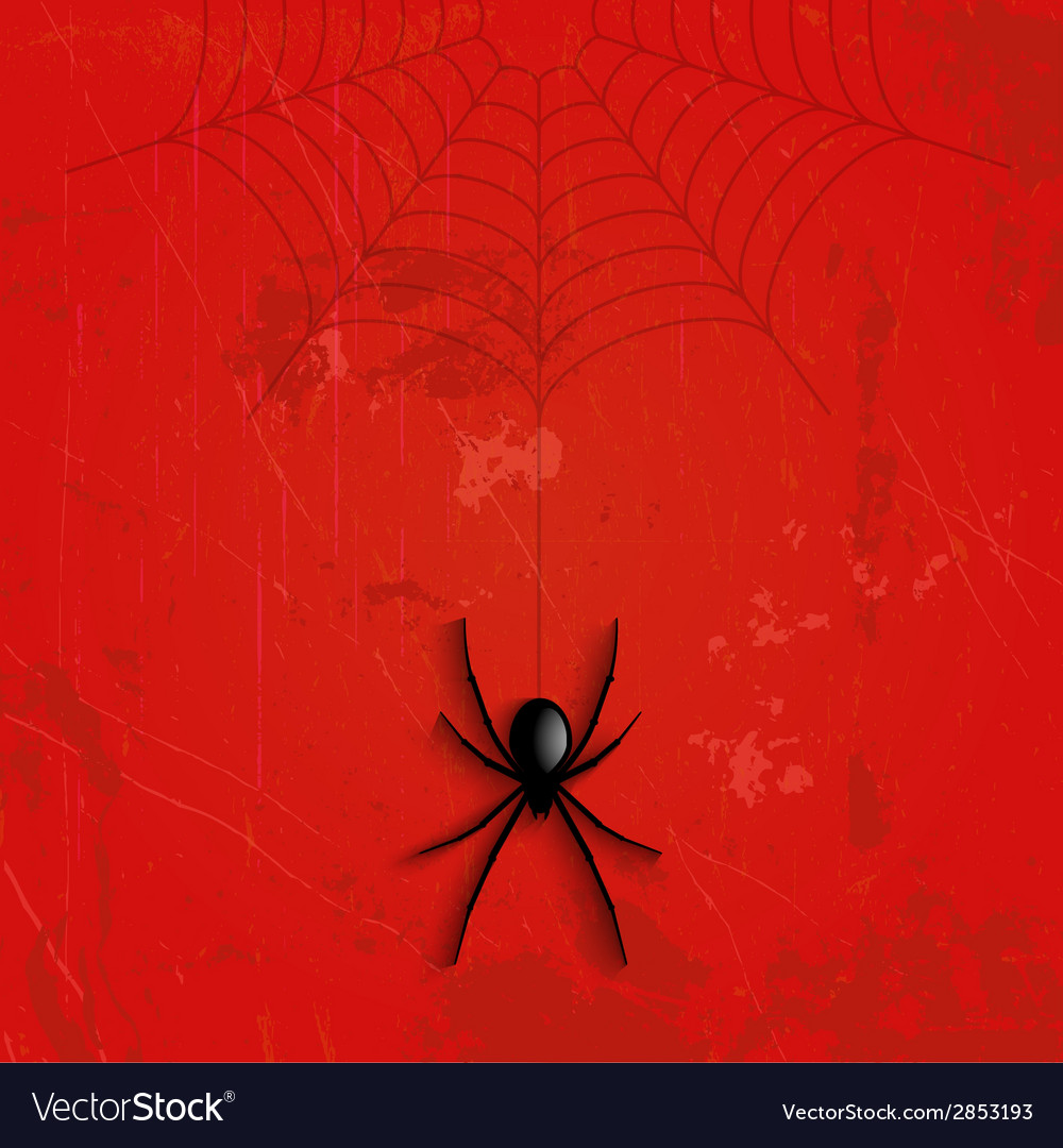 Grunge halloween spider background vector | Price: 1 Credit (USD $1)