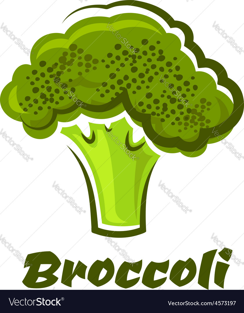 Cartoon fresh green healthy broccoli vegetable vector | Price: 1 Credit (USD $1)