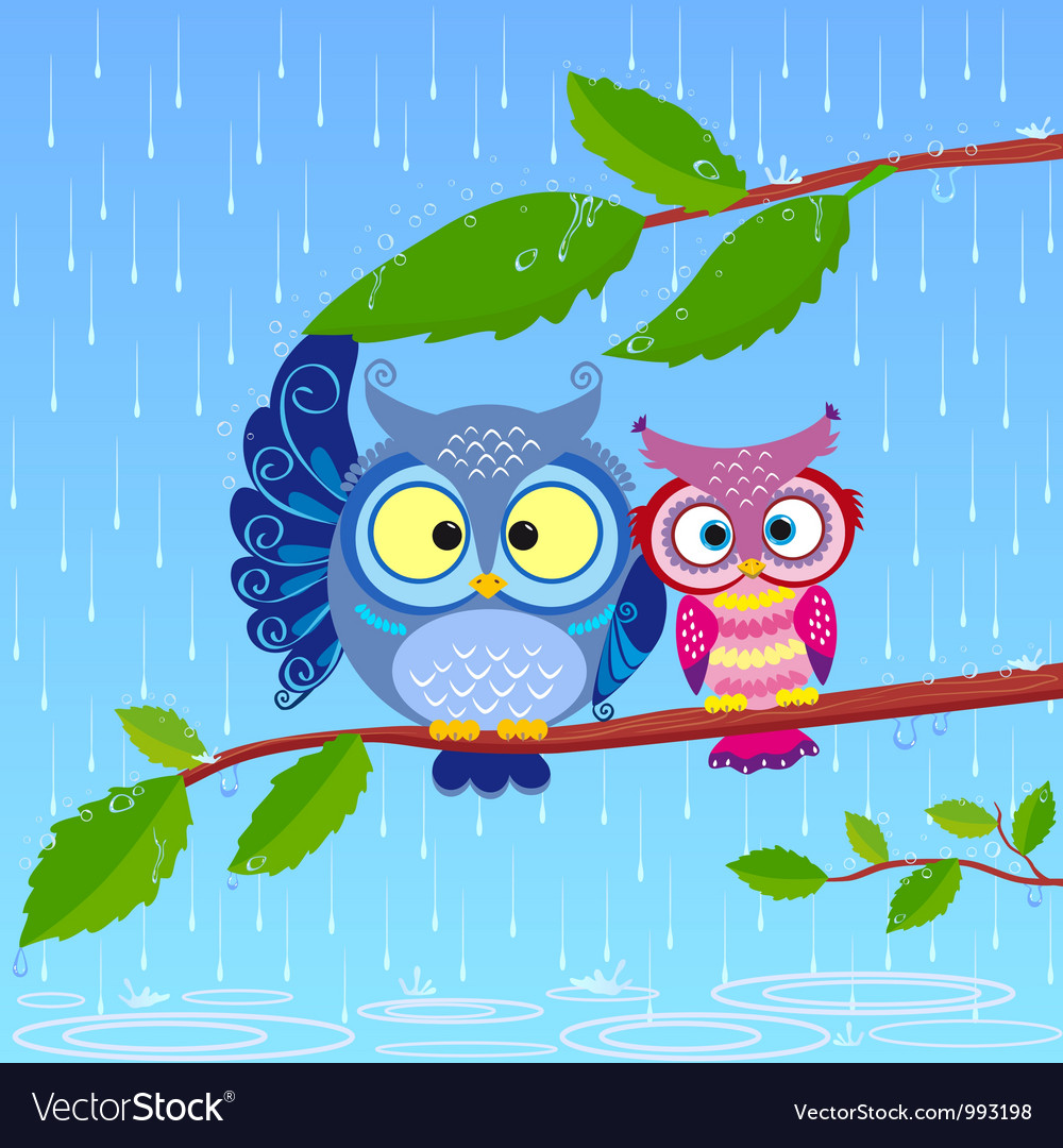 Owl rain vector | Price: 1 Credit (USD $1)