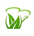 Fresh green herbal teapot vector