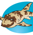 Cartoon bamboo shark vector