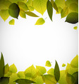 Spring leafs abstract background vector